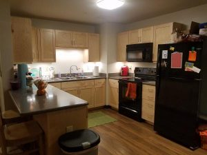 The Woods kitchenette